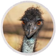 Emu By Itself Outdoors During The Daytime. Round Beach Towel