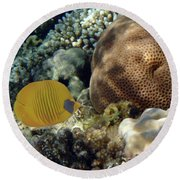 Exciting And Beautiful Red Sea World 2 Round Beach Towel