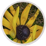 Round Beach Towel featuring the photograph Extraordinary by Dale Kincaid