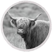 Face-to-face With A Highland Cow - Black And White Round Beach Towel