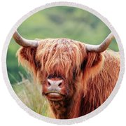 Face-to-face With A Highland Cow Round Beach Towel