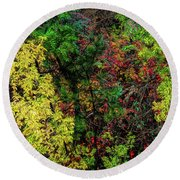 Round Beach Towel featuring the photograph Fall Color Along The Big Tom by Jon Burch Photography