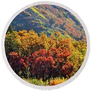 Fall Colors Along Avalanche Creek Road Round Beach Towel