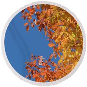 Round Beach Towel featuring the photograph Fall Colors by Steven Sparks