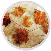 Round Beach Towel featuring the photograph Fall Keepers by Randi Grace Nilsberg