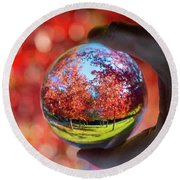 Round Beach Towel featuring the photograph Fall by Ross G Strachan