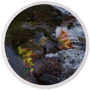 Fall Rushes By Round Beach Towel