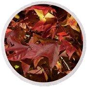 Fall Sweetgum Leaves Df004 Round Beach Towel