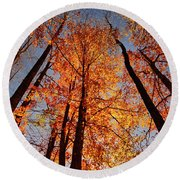 Fall Trees Sky Round Beach Towel