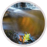 Round Beach Towel featuring the photograph Fallen Oak Leaf In Vaughan Woods by Rick Berk