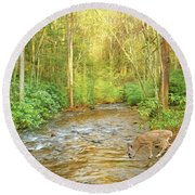 Fawn Drinking From Stream Round Beach Towel