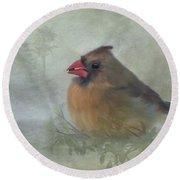 Female Cardinal With Seed Round Beach Towel