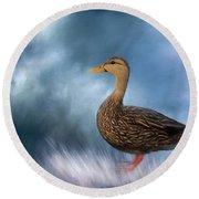 Female Mallard Duck Round Beach Towel
