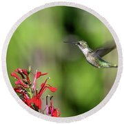 Female Ruby-throated Hummingbird Dsb0320 Round Beach Towel