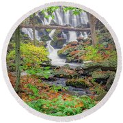 Round Beach Towel featuring the photograph Fern Falls by Bill Wakeley