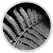 Fern Leaf Black And White Round Beach Towel