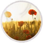 Field Of Poppies At Dawn Round Beach Towel