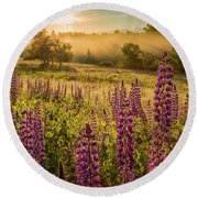 Fields Of Lupine Round Beach Towel