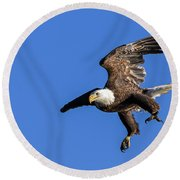 Round Beach Towel featuring the photograph Final Approach by Lori Coleman