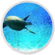 Fish Swoop Round Beach Towel