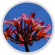 Flowers In Clear Blue Sky Round Beach Towel