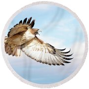 Flying Red-tailed Hawk Round Beach Towel