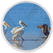 Follow The Leader Round Beach Towel