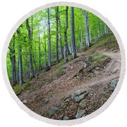 Forest On Balkan Mountain, Bulgaria Round Beach Towel