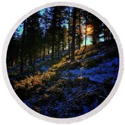 Round Beach Towel featuring the photograph Forest Sunrise by Dan Miller