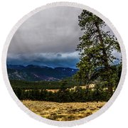 Forked Tree Round Beach Towel