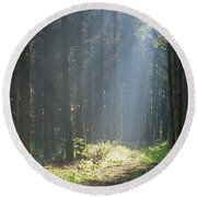 Round Beach Towel featuring the photograph Forrest And Sun by Anjo Ten Kate