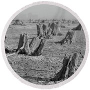 Round Beach Towel featuring the photograph Forrest by Davor Zerjav