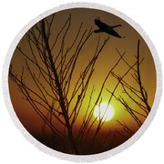 Fowl Morning Round Beach Towel