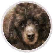 French Poodle Round Beach Towel
