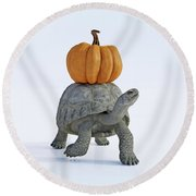 Friends The Tortoise And The Pumpkin Round Beach Towel