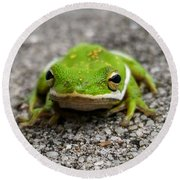Round Beach Towel featuring the photograph Frogger by Vincent Autenrieb