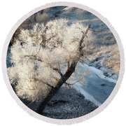 Round Beach Towel featuring the photograph Frosted Tree And Creek 01 by Rob Graham