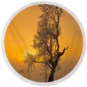 Frosted Tree Round Beach Towel