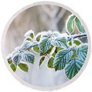 Frosty Leaves Round Beach Towel