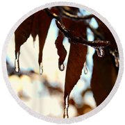Round Beach Towel featuring the photograph Frozen Autumn  by Candice Trimble