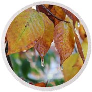 Round Beach Towel featuring the photograph Icy Foliage by Candice Trimble