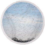 Geese In The Flyway Round Beach Towel