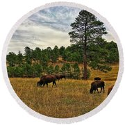 Round Beach Towel featuring the photograph Genesee Bison Herd by Dan Miller