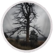 Round Beach Towel featuring the photograph Ghostly Snag by Dan Miller