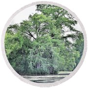 Giant River Tree Round Beach Towel