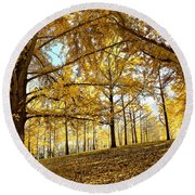 Round Beach Towel featuring the photograph Ginkgo Grove by Candice Trimble