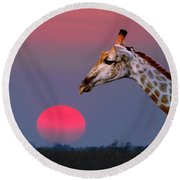 Giraffe Composite Round Beach Towel