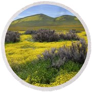 Glorious Color Round Beach Towel