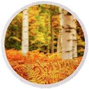 Golden Ferns In The Birch Glade Round Beach Towel