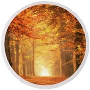 Round Beach Towel featuring the photograph Golden Forest In Fall Season by IPics Photography